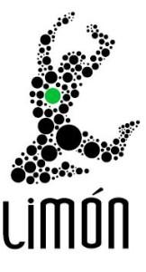 Logo José Limón Dance Foundation